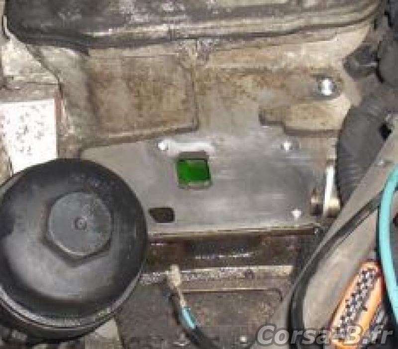 temoin controle gaz echappement clio